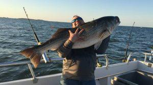 Striped Bass Fishing Wenona