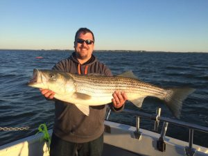 Striper Fishing Spring Battle