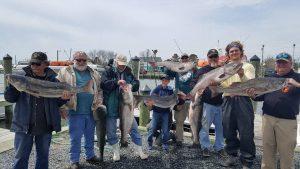 Successful Striper Fishing Trip