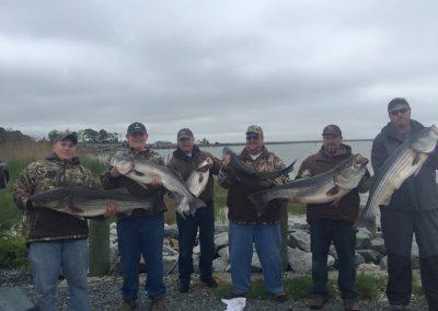 Worn Down Striper Fishing