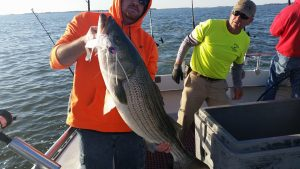 Spring Time Striped Bass